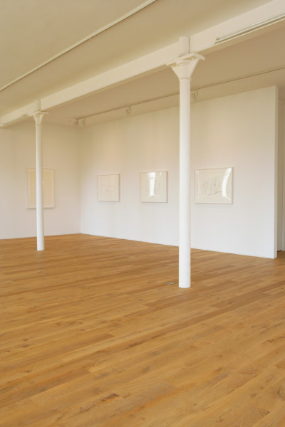 Installation view of the exhibition Ellsworth Kelly - Plant Lithographs from the Artist's Collection 2008